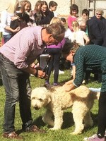 Blessing pets in Harnham