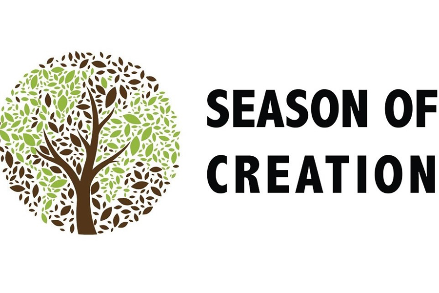 Partnering up for Creation